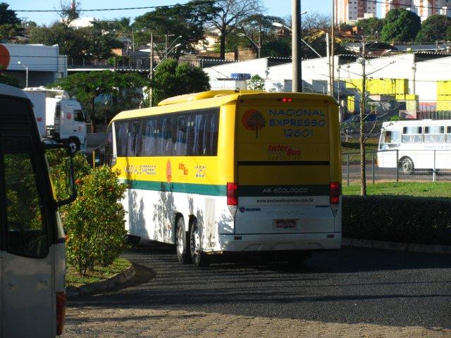 Ônibus parcialmente encoberto por arbusto.