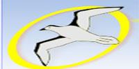 logo logotipo Advance Transatur