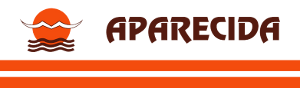 logo logotipo VINSAL - Viação Nossa Senhora Aparecida