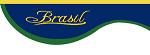logo logotipo Brasil SA Transporte e Turismo