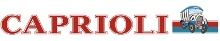logo logotipo Viação Caprioli